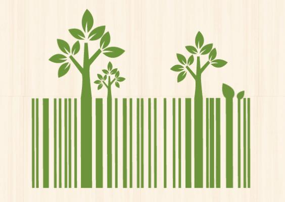 Creare valore per il cliente con il Green: casi di successo a confronto