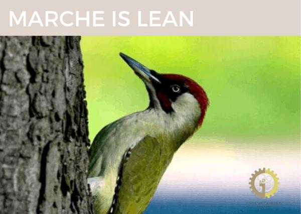 Marche is Lean